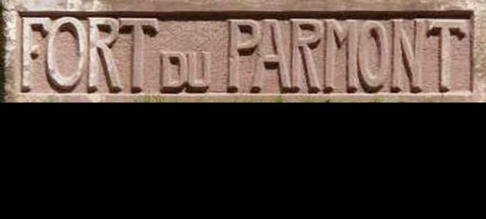 Ville De Remiremont Sentier Séré De Rivières Logo Cté Sauvegarde Fort Parmont